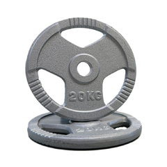 Olympic Hammertone Plate Single