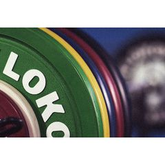Klokov Equipment 140kg Bumper Plate Package