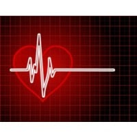 What is Heart Rate Controlled Training? main image